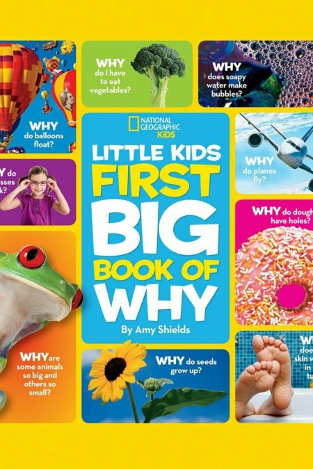 NG Little Kids First Big Book of Why
