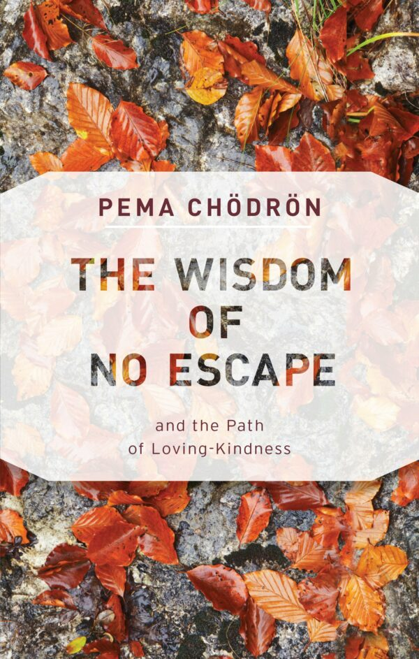 Wisdom of No Escape How to love yourself and your world