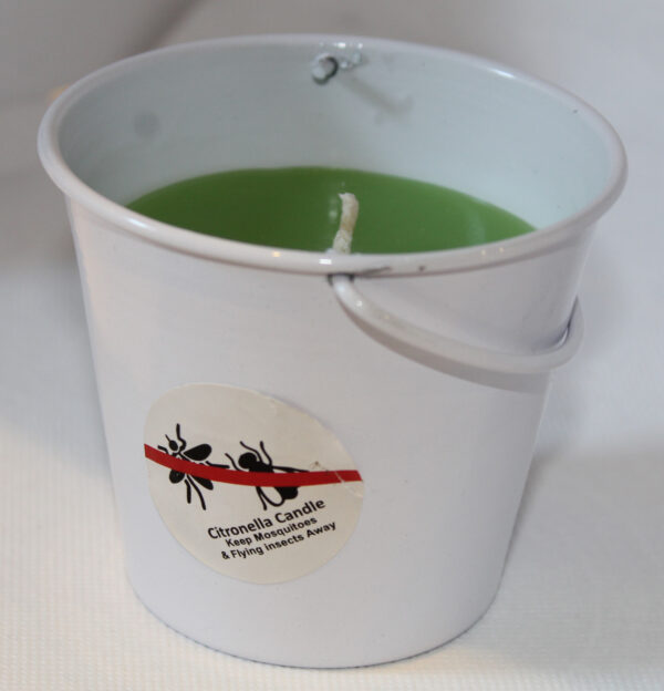 Bucket White Lime Green