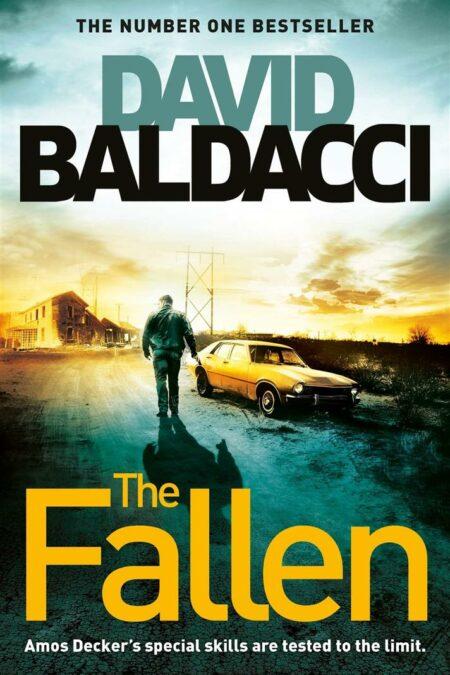 Fallen Book 4 Memory Man series