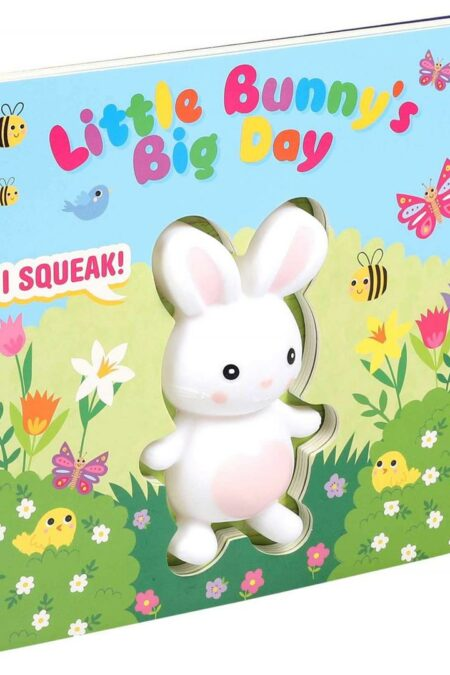 Little Bunny's Big Day